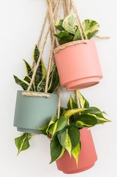 Decorate your house with one of these chic and trendy hanging planters. I've found 21 DIY hanging planters you can make at home to add a little greenery. Vertical Wall Planters, Diy Hanging Planter, Diy Hanging Shelves, Floating Shelves Diy, Diy Planters, Planter Pots, Planter Ideas, Target Planters, Succulent Planters