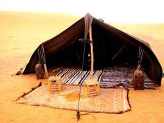 94b84a53cf16f27bcff8390933bfa389--desert-oasis-camping-survival.jpg 500×375 pixels