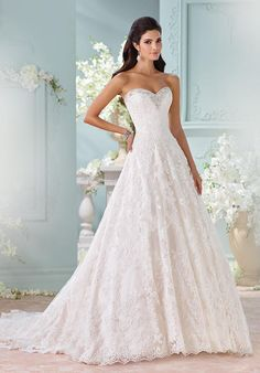 Strapless hand-beaded Alencon lace appliqués and tulle over satin A-line gown | David Tutera for Mon Cheri | https://www.theknot.com/fashion/116211-clytie-david-tutera-for-mon-cheri-wedding-dress | https://moncheribridals.com/collections/wedding-dresses/david-tutera-for-mon-cheri/?utm_source=theknot.com&utm_medium=referral&utm_campaign=theknot&utm_content=gallery