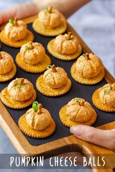 Pumpkin Cheese Balls These bite-size mini pumpkin cheese balls appetizers are easy to make and only take minutes to put together.These bite-size mini pumpkin cheese balls appetizers are easy to make and only take minutes to put together. Fall Appetizers, Cheese Appetizers, Appetizer Recipes, Appetizer Ideas, Best Thanksgiving Appetizers, Thanksgiving Sides, Savoury Recipes, Pumpkin Recipes, Fall Recipes