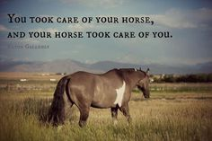 Rodeo Quotes added a new photo. Rodeo Quotes, Equestrian Quotes, Horse Quotes, Cowgirl And Horse, Horse Love, Horse Girl, Yorkies, Pretty Horses, Beautiful Horses
