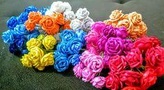 Micro Rosas
