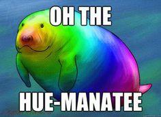 Oh the Hue-Manatee! :)