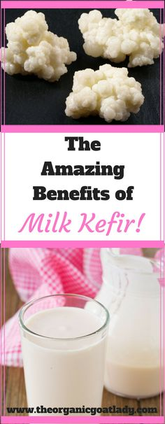 The Amazing Benefits of Milk Kefir!