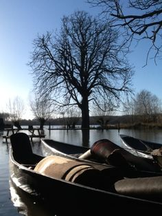 Canoes, carrying our flooded carpet, after the January 2014 floods - the highest here since April 1947.