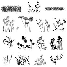 Flower Drawing Flower Silhouettes Clip Art Clipart Flower Clip Art Clipart - Personal and Commercial Use - Silhouette Photoshop, Grass Silhouette, Silhouette Clip Art, Art Clipart, Doodle Art, Doodle Drawings, Brosses Photoshop, Photoshop Brushes, Plant Drawing
