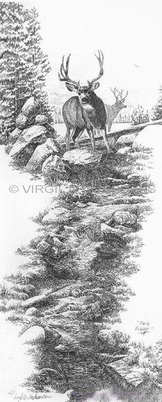 Early October, wildlife deer in a stream pencil drawing by western Artist Virgil C. Stephens