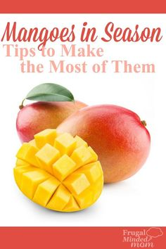 Mangoes are in Season. Find why you should eat them and get tips for picking, storing and serving your mangoes. Also included is a recipe for Mango Salsa. Mango Salsa Recipes, Plant Based Diet, Ways To Save Money, Mom Blogs, Frugal, Great Recipes, Mindfulness, Seasons, Make It Yourself