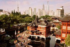 25 причин поехать в Шанхай