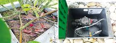 Loxone Bewässerungssystem Collage