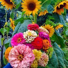September 13 In The Garden