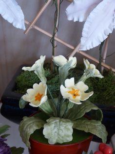 Sugar Flowers, Plants, Flora, Plant