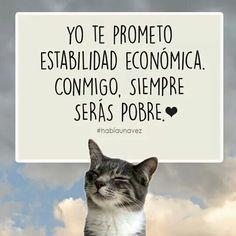 Yo te prometo estabilidad economica conmigo, siempre seras pobre