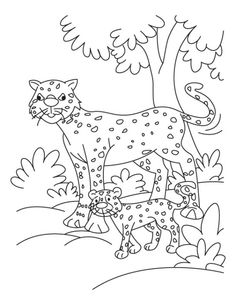 Baby Cheetah Coloring Pages For Kids 00