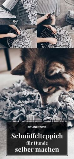 DIY: make a sniffing carpet for dogs yourself? - Make sniffing carpet for dogs yourself, DIY dog instructions, make dog toys yourself, dog tips and - Diy Cat Toys, Dog Toys, Baby Dogs, Pet Dogs, Diy Jouet Pour Chat, Toy House, Dog Hacks, Diy Carpet, Dog Care