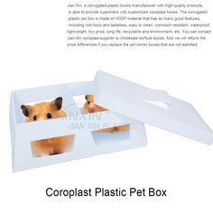 Corrugated plastic pet box is made of HDDP material with non-toxic and tasteless, size thickness, color all can be customized. Box Manufacturers, Corrugated Plastic, Recycling, Environment, Cleaning, Pets, Life, Recyle, Repurpose