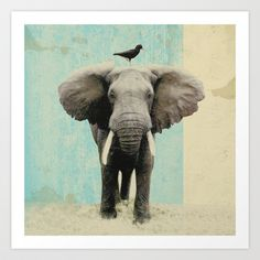 'friends for life _ elephant and a black bird' by Vin Zzep Bird Prints, Framed Art Prints, Fine Art Prints, Canvas Prints, Elephant Love, Elephant Art, Elephant Stuff, African Elephant, Elephas Maximus