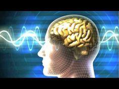 ▶ Dr. Pillai's -- 3rd Eye Healing & Energizing Meditation (Midbrain Activation) - YouTube