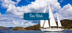 Sea Bird Sailing Excursions Costa Rica