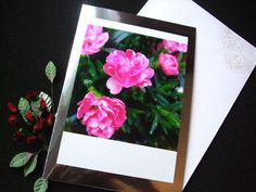For any occasion. Stunning flower photograph mounted onto beautiful silver mirri card. Can be placed in a photo frame to display forever.  Card size A5 14.5 cm x 22.5 cm Materials used: 250 gsm silver mirri card Materials used: High resolution gloss photograph Materials used: White envelope - v shaped opening Inside wording: Left blank for you own personal message Packaging: Will be presented in a cellophane sleeve and carefully wrapped in a board-backed envelope. Postage: Sent by First…