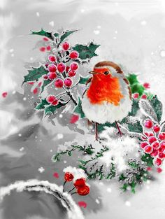 William Simpson - robin and holly 3 .jpg