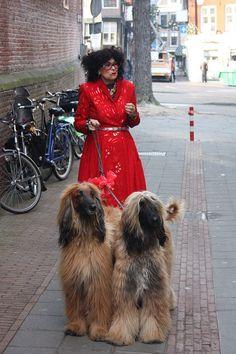 Dutch fashion designer Fong Leng, still rocking it in Best Drugstore Matte Foundation, Best Drugstore Red Lipstick, Foundation For Oily Skin, Tiny Puppies, Dark Under Eye, Afghan Hound, Pictures Of People, Hound Dog, Dog Mom