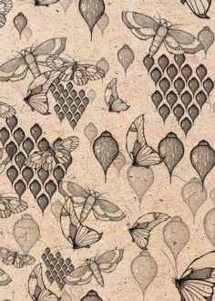 love these drawn by Louise Harding / surface pattern designer Textile Patterns, Print Patterns, Botanical Illustration, Illustration Art, Illustrations, Scrap, Insect Art, Surface Pattern Design, Repeating Patterns