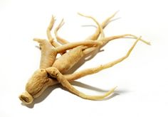 """Ginseng refers to a group of adaptogenic herbs from the plant family Araliacae. Commonly, ginseng refers to """"true"""" ginseng (Panax ginseng C. Meyer), as well as a related plant called Siberian ginseng (Eleutherococcus senticosus), or Eleuthero for short. Ginseng Benefits, Health Benefits, Superfoods, Ginseng Tea, Ginseng Plant, Libido Boost, Korean Ginseng, Medicinal Herbs, Kraut"""