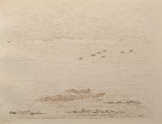 "Ducks at a Lake by Charles Murray Adamson (1820-1894) Pen and ink drawing on paper In a cream conservation grade mount (matt) ​In good condition, some very minor age staining to the lower left edge,  as illustrated ​Drawing: 17.3 x 22.8 cm (visible); mount: 28 x 35.5 cm (11"" x 14"")"