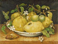 Giovanna Garzoni (1600–1670) - Still Life with Bowl of Citrons