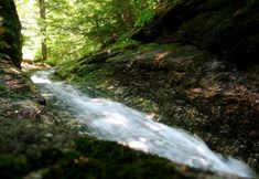 These 10 Waterfalls in Maine Will Take Your Breath Away | Only In Your State