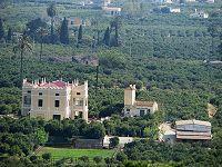 Valencia Alcira - Huertos de naranjos, en la llanura de Alcira.