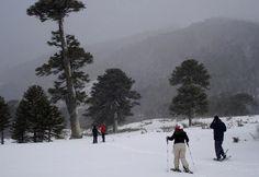 Esqui em vulcão é atração no Chile