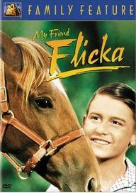 My Friend Flicka  horse movie