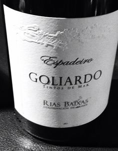 Goliardo Espadeiro 2009 by Bodegas Forjas del Salnes.  Amazing red from Rias Baixas...some of my favorite Spanish reds now come from the northwest of Spain.  From rare red indigenous varieties this line of Tintos del Mar is generally light, minerally, sometimes earthy and smoky with great acidity and very aromatic fruit.  Amazingly fresh and wonderful with all sorts of food!
