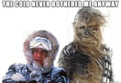 """Smash up...star wars and movie frozen. Han Solo and Chewie on Hoth, """"The Cold never bothered me anyway."""" HA!"""