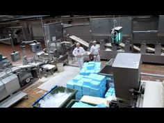 Continuous dough mixing system
