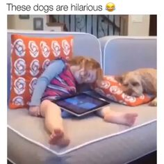 Top 100 Animal videos on Vine Funny Cute Animals Compilation 2018 ⋆ Virals Videos Just for Laughs and Nothing Else Cute Funny Dogs, Cute Funny Animals, Cute Baby Animals, Animals And Pets, Cute Animal Photos, Cute Animal Videos, Funny Animal Pictures, America Funny, Funny Dog Videos
