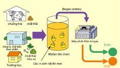 Biogas là gì? Cơ chế hình thành biogas?