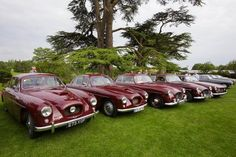 A big bunch of Bristols. Vintage Cars, Antique Cars, Bristol Cars, Citroen Traction, Grand Luxe, Design Cars, Fiction Movies, Citroen Ds, Oxblood