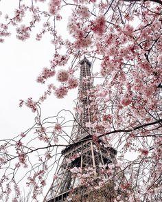 4,815 отметок «Нравится», 66 комментариев — P o l i n a  |  П о л и н а (@polabur) в Instagram: «One of the reasons why we came to Paris was to greet spring  приехали в Париж встречать весну…»