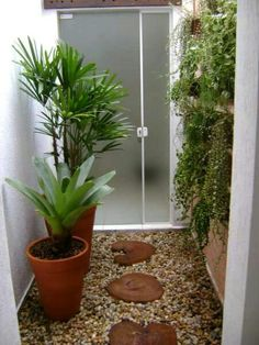 Mini Garden Inside the House. You must have tried all kinds of ways to decorate your house, but you always feel that there are a little life Ideas Para Decorar Jardines, Grow Tent, Interior Garden, Small Gardens, Winter Garden, Garden Landscaping, Garden Design, Succulents, Home And Garden