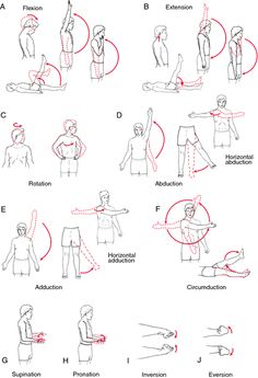 pictures of exercises for stroke patients | range of motion exercise