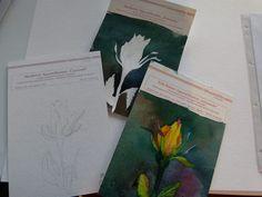 Aquarellkurs und Vorstellung der Mijello Aquarellfarben in Rostock | Aquarellieren beginnt mit der richten Papierauswahl (c) Frank Koebsch