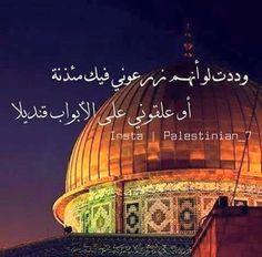 Palestine Liberation Organization, Palestine Art, Arabic Quotes, Jerusalem, Taj Mahal, Life Quotes, Arabic Art, Nature, Mosques