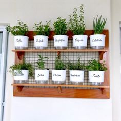 outdoor herb garden ads/ Impressive Indoor Vertical Garden Decor Ideas Want to grow a garden but have limited space? When you grow a garden vertically, the sky truly is the limit! Herb Garden In Kitchen, Kitchen Herbs, Home And Garden, Plants In Kitchen, Kitchen Gardening, Herb Garden Design, Diy Herb Garden, Herbs Garden, Gardening Vegetables