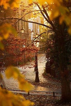 Image discovered by Kristine. Find images and videos about photography, nature and autumn on We Heart It - the app to get lost in what you love. Beautiful World, Beautiful Places, Beautiful Pictures, Hello Beautiful, Trees Beautiful, Absolutely Gorgeous, Hello October, October Fall, Happy October