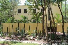 Residential Property for sale in Tulum, Mexico Steen'S House : Green-Built Home In Los Arboles Tulum, Tulum, Quintana Roo
