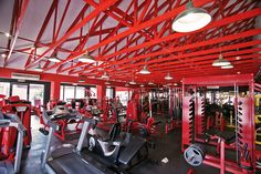 Personal Training Studio, Studio Equipment, Physique, Basketball Court, Physicist, Physics, Body Types, Physical Science