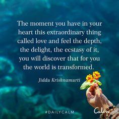 Feeling True Love – Disciplining With Gentle Firmness J Krishnamurti Quotes, Jiddu Krishnamurti, Calm Quotes, Me Quotes, Qoutes, Quotations, Spiritual Awakening, Spiritual Quotes, Beautiful Soul Quotes